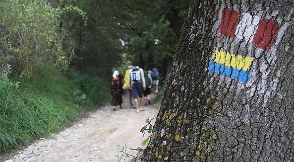 Sentiero di Francesco: celebriamo il Creato
